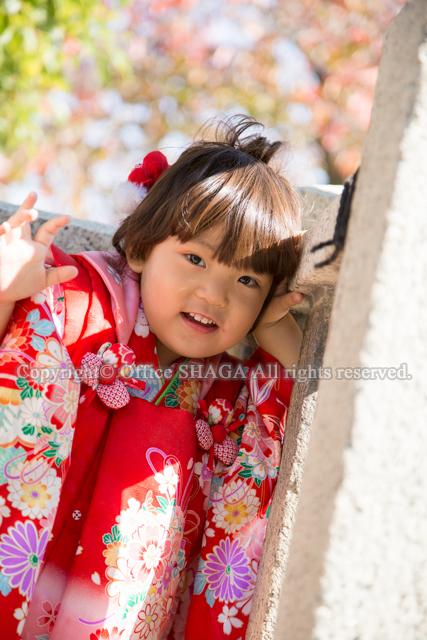 大阪ベビー写真、ベビーフォト、お宮参り写真、ロケーションフォト、出張写真の画像37